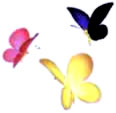 Artwork of the Unmarked Spectralids in Pikmin 2.