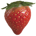 The Sunseed Berry in Pikmin 3.