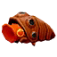 Firesnout Beetle icon.png
