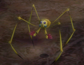 38anodedweevil.png