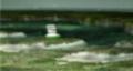 Pikmin Early Screenshot 5.png