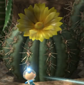 Cactus with yellow flower.png