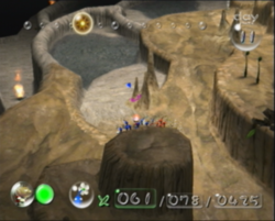 The location where Blue Pikmin are first found, on The Forest Navel.