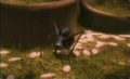 34antennabeetle.png
