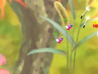 Fragrant Forest Spornet cutscene.jpg