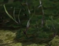 Pikmin 3 prototype plant.png