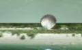 Pikmin early Screenshot 4.png