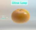 Citrus Lump P3 analysis.png
