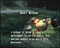 Reel6 Dwarf Bulbear.png