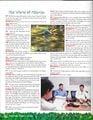 Nintendo Power Pikmin interview page 94.jpg