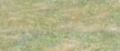 Grassterrain.png