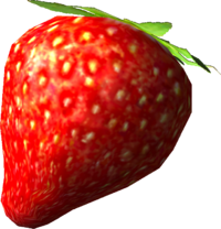 The Sunseed Berry