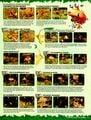 Nintendo Power 152 January 2002 33.jpg