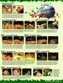 Nintendo Power 152 January 2002 35.jpg