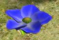 Lapiz Lazuli Candypop Bud.png