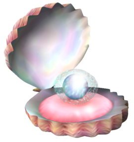 Artwork of a Pearly Clamclamp.
