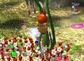 Ravenous Whiskerpillar climbs Spiderwort P2.jpg