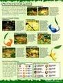 Nintendo Power 152 January 2002 37.jpg