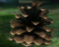 Conifer Spire TH.png
