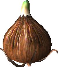 The Pilgrim Bulb