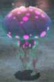 36greaterspottedjellyfloat.png